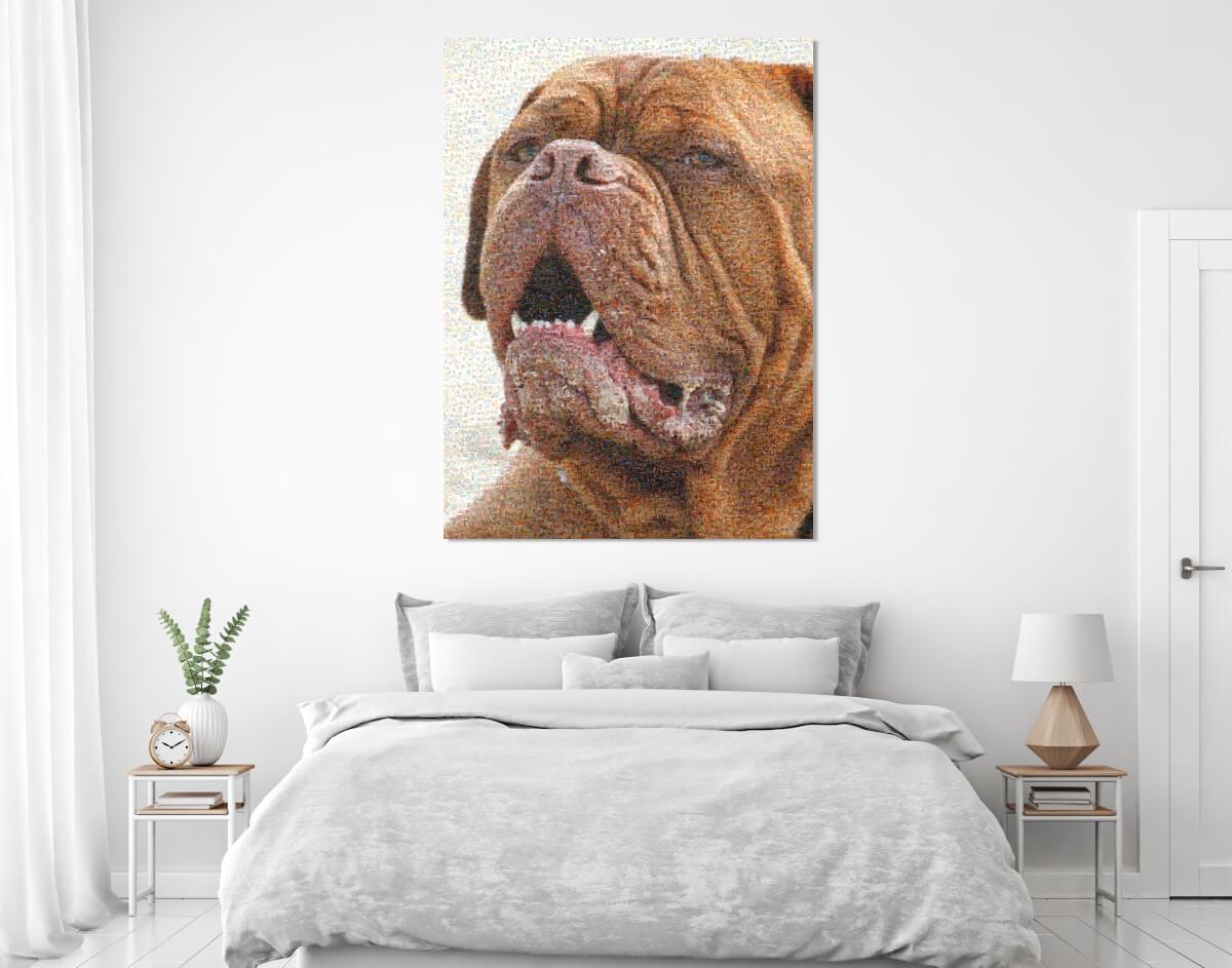 Hundemosaik im Schlafzimmer